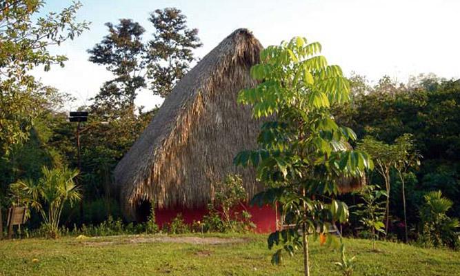 lasguacamayas.jpg