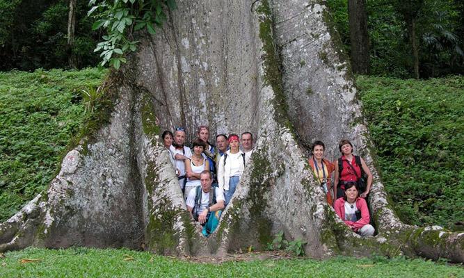 palenque1.jpg